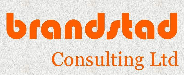 SUSTAINABLE BUSINESS STRATEGY|CONSULTING|TRAINING|CAPACITY BUILDING – BRANDSTAD CONSULTING